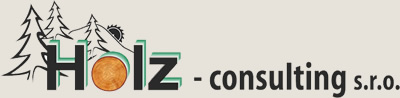 HOLZ - consulting