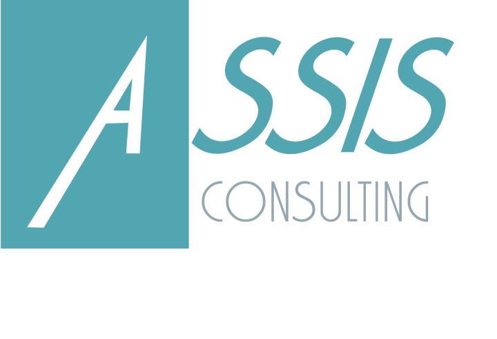 ASSIS consulting Martin Čuka